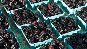 San Rafael cancels summer farmers market