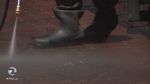 Feces on San Francisco sidewalks appears to be getting worse report says