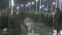 Residents brave rain in Santa Rosa for fresh Christmas trees