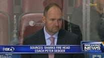 San Jose Sharks fire head coach Peter DeBoer, name replacement