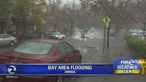Rainstorm causes flooding, downed trees all over Bay Area