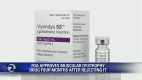 In surprise decision, US approves muscular dystrophy drug