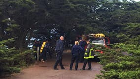 Man who died in fall from Lands End cliff identified