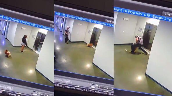 Video captures man's heroic rescue of dog after leash gets shut in elevator doors