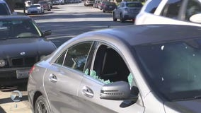 12 vehicles damaged by vandals overnight in Willow Glen neighborhood