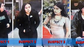 Four suspects sought in theft at Alameda grocery store