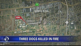 Three dogs die in early morning Santa Rosa granny unit fire