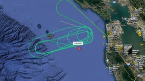 Bird strike prompts China Airlines flight to return to SFO