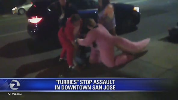 FurCon video: Domestic violence suspect restrained by 'furries' until police arrive