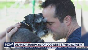 Alameda man cashes out 401k pay for dog's life-saving surgery