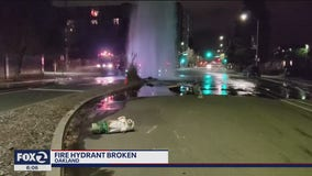 Hit-and-run driver sheers off Oakland fire hydrant