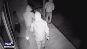 House sitter robbed at gunpoint in Pleasanton home invasion