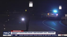 Five shots fired at BMW on freeway in Fremont