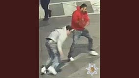 Police make 2 arrests in downtown Santa Rosa melee involving golf club attack