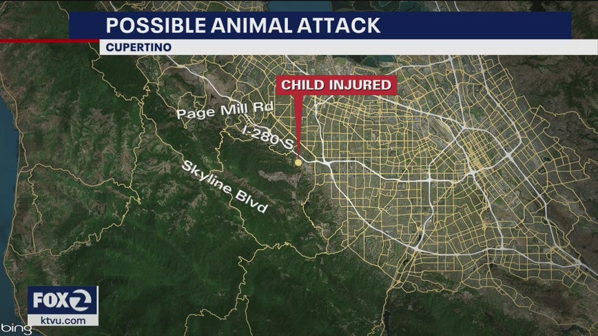 Rancho San Antonio park closed after child attacked by suspected mountain lion