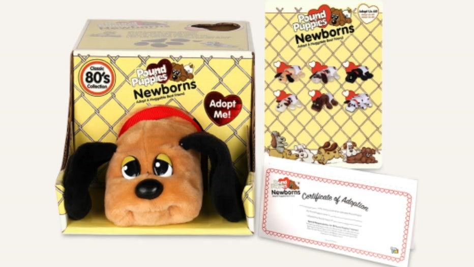 pound-puppies-1.jpg