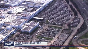 Tesla to close production at Fremont factory