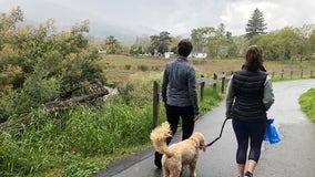 Going stir crazy in quarantine? Take a hike