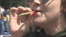 SF's Hippie Hill fenced off for 4/20, party moves online