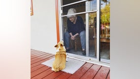 Visit with grandma: San Bruno dog brings comfort during shelter-in-place
