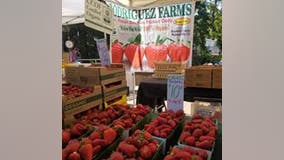 Vacaville farmers' market to reopen, with some modifications due