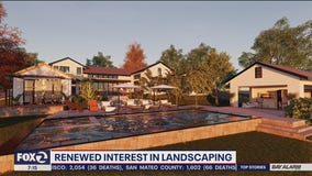 Mill Valley landscape architect firm sees increase in people wanting to work on outdoor living spaces