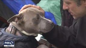 Sanctioned homeless tent encampment set for Haight Street faces lawsuit