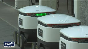 Delivery robots in high demand, serve Mountain View area