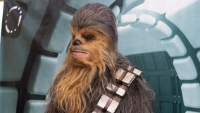 May the 4th be with you: Disney Plus honors 'Star Wars Day' with 3 new releases