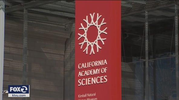 Cal Academy of Sciences announces major job cuts amid pandemic