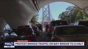 Protesters cleared from Bay Bridge after blocking all westbound traffic for hours
