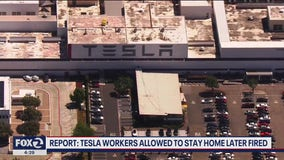 Tesla workers reportedly fired after staying home over fears of contracting COVID-19