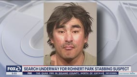 Rohnert Park police look for stabbing suspect