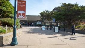San Francisco Zoo postpones reopening due resurgent virus