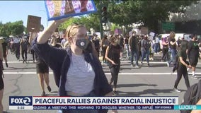 Walnut Creek city council to get report on police response to protests