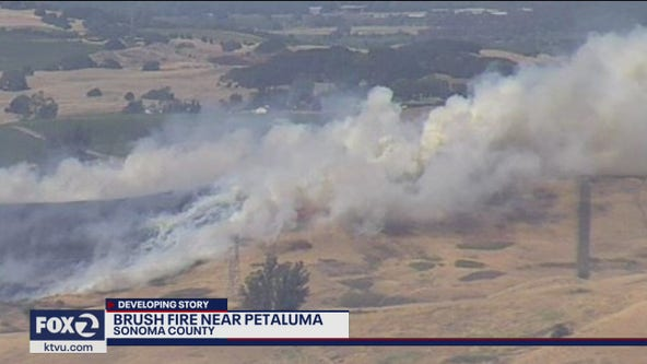 Gulch Fire burning north of Lakeville at 107 acres