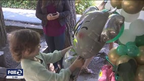 Los Gatos girl gets surprise from Make-A-Wish Foundation after dream trip put on hold