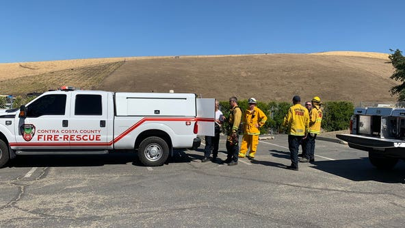 Crews quickly contain vegetation fire in Concord