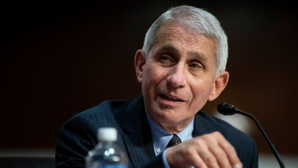 GOP doctor in Tennessee Senate race wants Fauci fired