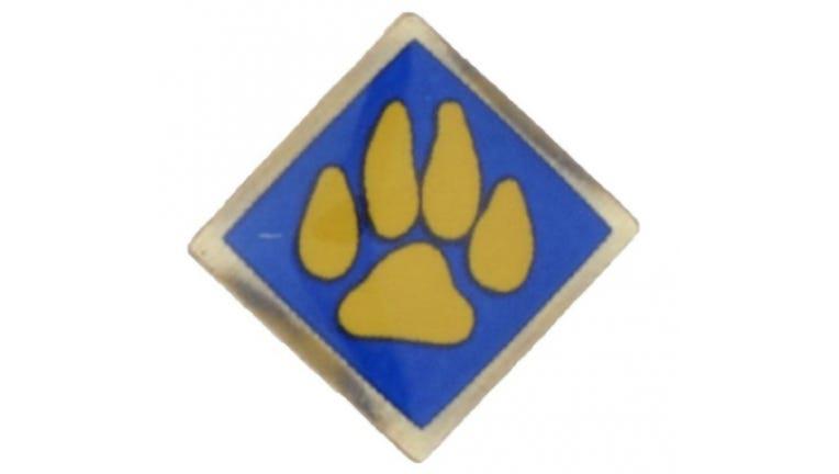 boy scouts pin 16x9