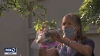 San Anselmo's free tree mask project takes root
