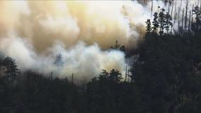 Progress slowed, evacuation orders in effect for Woodward Fire in Marin County