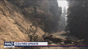More CZU Lighting Complex fire evacuees allowed to return home
