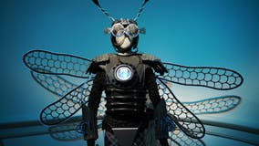 Burning Man goes virtual for 2020