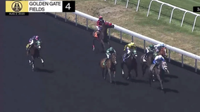 3-year-old filly euthanized after injuring leg at Golden Gate Fields race track