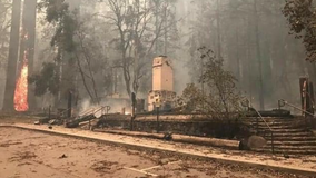 California's oldest state park, Big Basin, suffers extensive damage because of wildfire