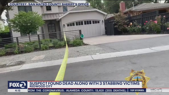 Woman stabbed to death in unincorporated Redwood City identified
