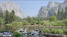 Business owners near Yosemite National Park excited to see park reopen
