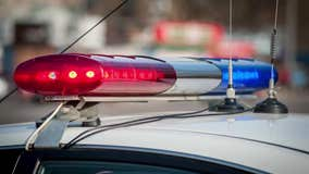 Petaluma police seek vandal who tried to pry open parking garage gate