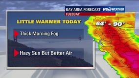 Thick fog, better air